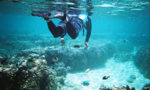 T7_01_2a_snorkelling