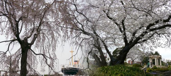山下公園・港の見える丘公園